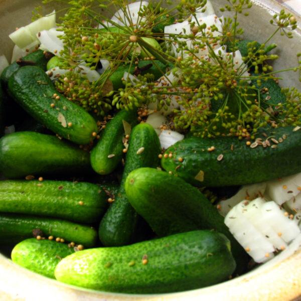 Süß-sauer eingelegtes Gemüse nach fränkischer Art