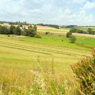 Rund um Bad Steben – Eine Genusstour im Hofer Land