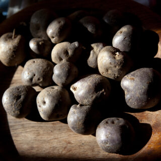schwarzblaue Frankenwald-Kartoffel