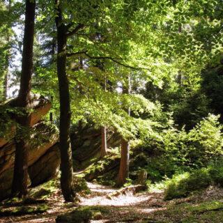 Auf gläserner Spur – Genießen in der Wohlfühlregion Fichtelgebirge