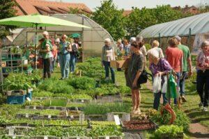 Tag der offenen Gärtnereien in Bamberg