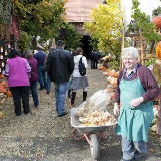 Altendorf: Zum Kürbisfest ins Kürbisdorf