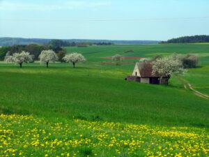 Landwirtschaft in Oberfranken - Kleinbauern