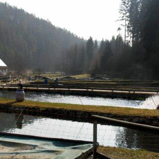 Aufseß: Besuch in der Lehranstalt für Fischerei des Bezirks Oberfranken