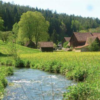 Aufseß: Wandern und Genießen in die Forellenregion Aufseßtal