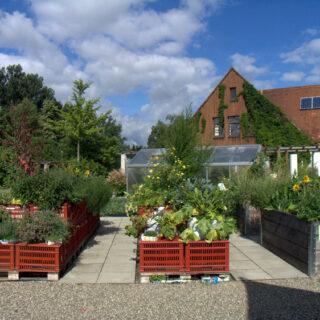 Bamberg: Besuch im Schaugarten des Gemüseversuchsbetriebes