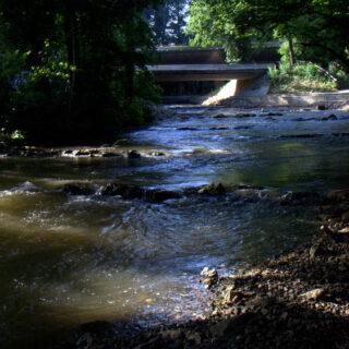 Bamberg: Von Fischpass bis Fischerstechen - Flusserlebnis
