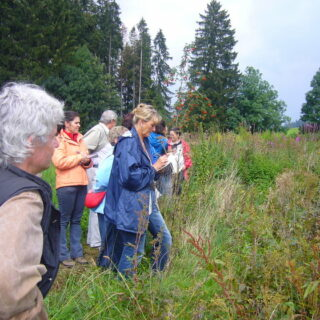 Birnstengel: Natur- und Kräuterhof Karin Holleis