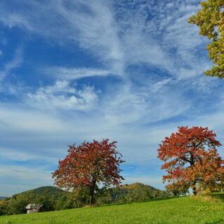 Fränkische Schweiz: Rund um Kunreuth, Weingarts und Regensberg