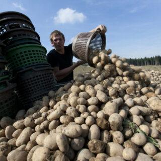 Kirchenlamitz: Wanderung auf dem Kartoffellehrpfad
