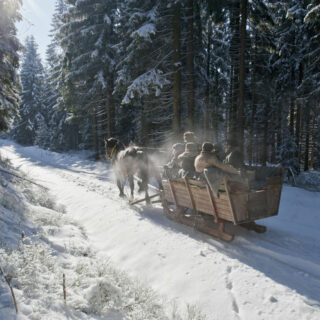 Kleintettau: Kutschen- und Schlittenfahrten durch den Frankenwald