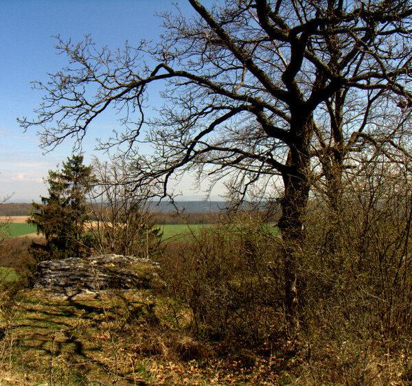 Klosterlangheim: Von Katharina bis Christopherus, auf dem Nothelferweg nach Vierzehnheiligen