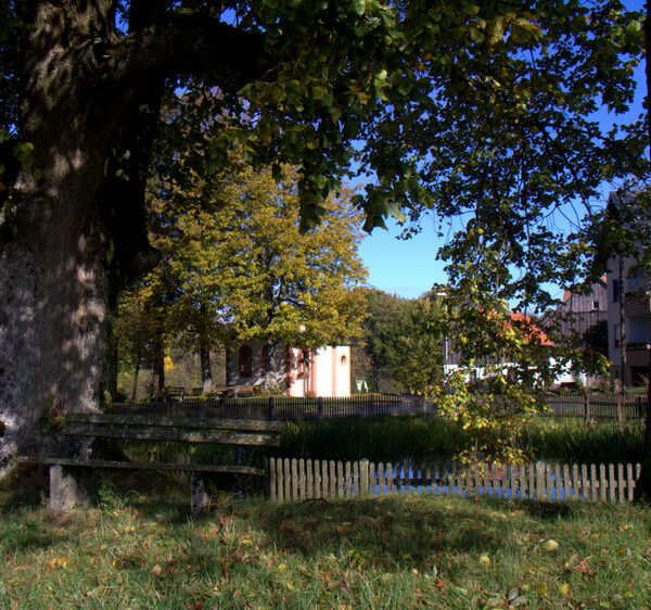Krögelhof: Holzofenbrote und mehr