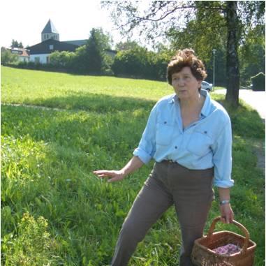Frieda Frosch - Bischofsgrüner Wildkräuterschule