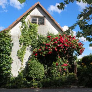 Biohof Distler, Kulmbach