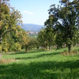 Landschaftspflegeverband Weidenberg und Umgebung e.V., Weidenberg